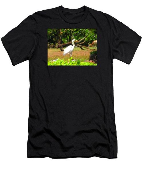 Zoo Men's T-Shirt (Athletic Fit)
