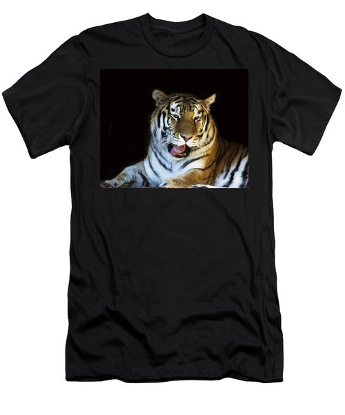 Awaking Tiger Men's T-Shirt (Athletic Fit)