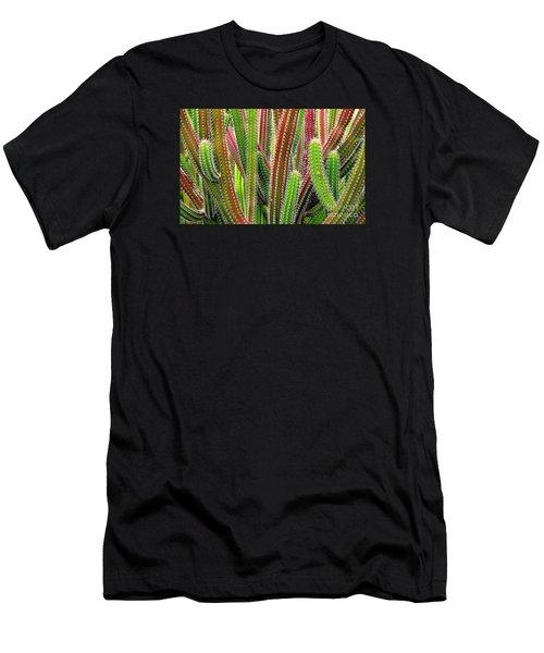 Cactus Men's T-Shirt (Athletic Fit)