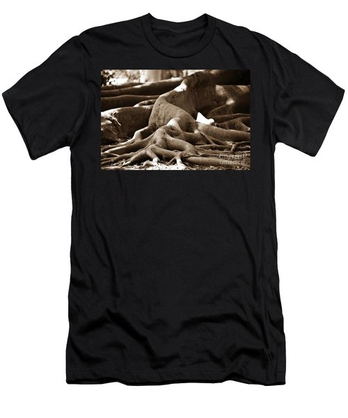 Fig Tree Roots Men's T-Shirt (Athletic Fit)