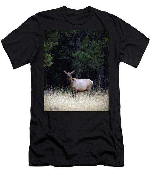 Men's T-Shirt (Slim Fit) featuring the photograph Forest Elk by Steve McKinzie