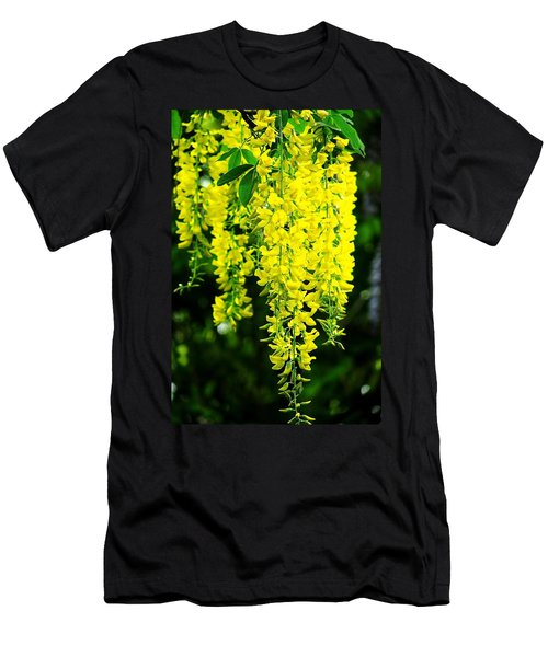 Golden Chain Tree Men's T-Shirt (Athletic Fit)