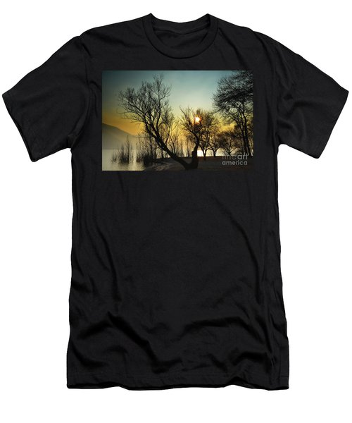 Sunlight Between The Trees Men's T-Shirt (Athletic Fit)