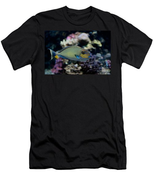 Tropical Fish Men's T-Shirt (Slim Fit) by Carol Ailles