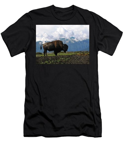 Men's T-Shirt (Slim Fit) featuring the photograph Alaskan Buffalo by Katie Wing Vigil