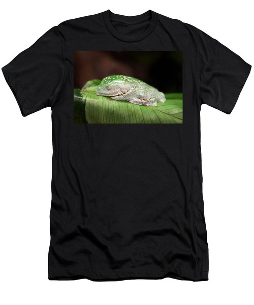 Amazon Leaf Frog Men's T-Shirt (Athletic Fit)