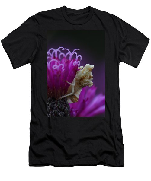 Ambush Bug On Tall Ironweed Men's T-Shirt (Athletic Fit)