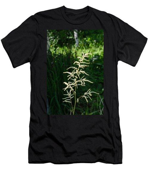 Aruncus Men's T-Shirt (Athletic Fit)