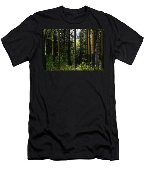 Aspens Banff National Park Men's T-Shirt (Athletic Fit)