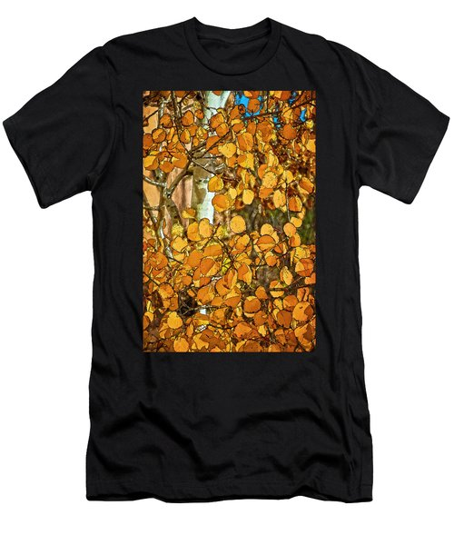 Aspens Gold Men's T-Shirt (Athletic Fit)