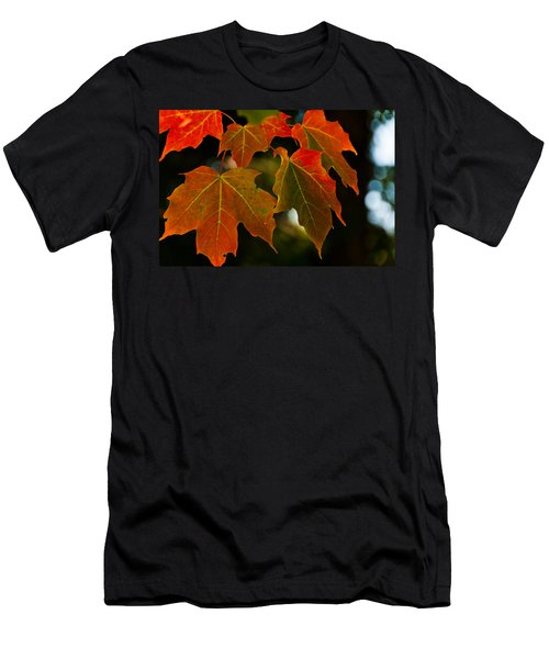 Men's T-Shirt (Slim Fit) featuring the photograph Autumn Glory by Cheryl Baxter
