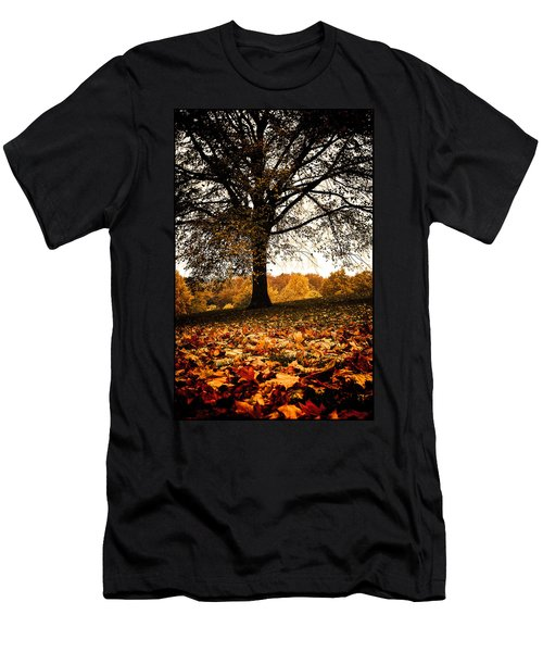 Autumnal Park Men's T-Shirt (Athletic Fit)