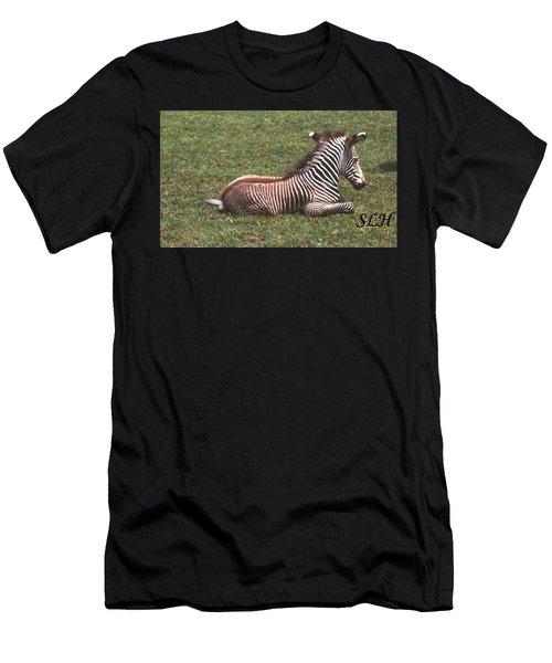 Baby Zebra Men's T-Shirt (Athletic Fit)