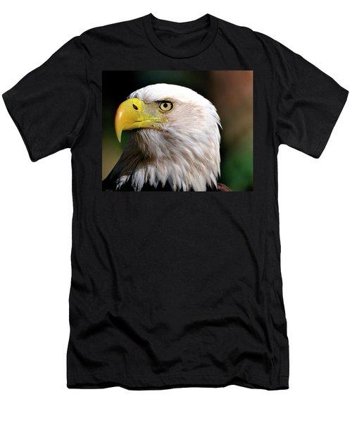 Bald Eagle Close Up Men's T-Shirt (Athletic Fit)