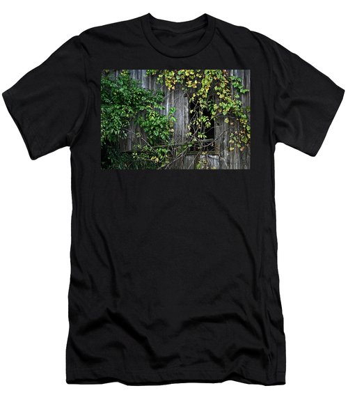 Barn Window Vine Men's T-Shirt (Athletic Fit)