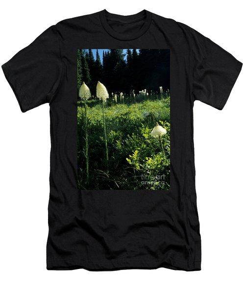 Bear-grass II Men's T-Shirt (Slim Fit) by Sharon Elliott