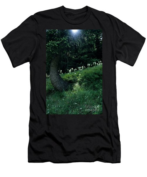 Bear-grass Ridge II Men's T-Shirt (Slim Fit) by Sharon Elliott