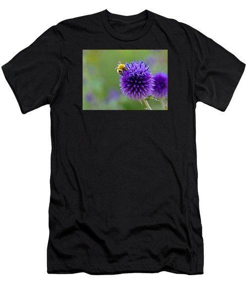 Bee On Garden Flower Men's T-Shirt (Athletic Fit)