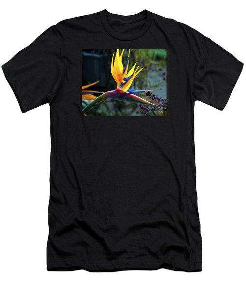 Bird Of Paradise Men's T-Shirt (Athletic Fit)