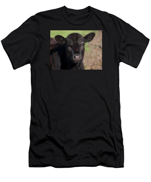 Black Cow Men's T-Shirt (Athletic Fit)