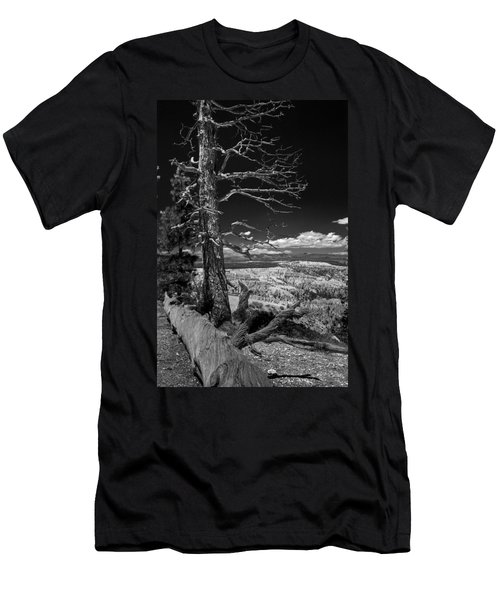 Bryce Canyon - Dead Tree Black And White Men's T-Shirt (Slim Fit) by Larry Carr