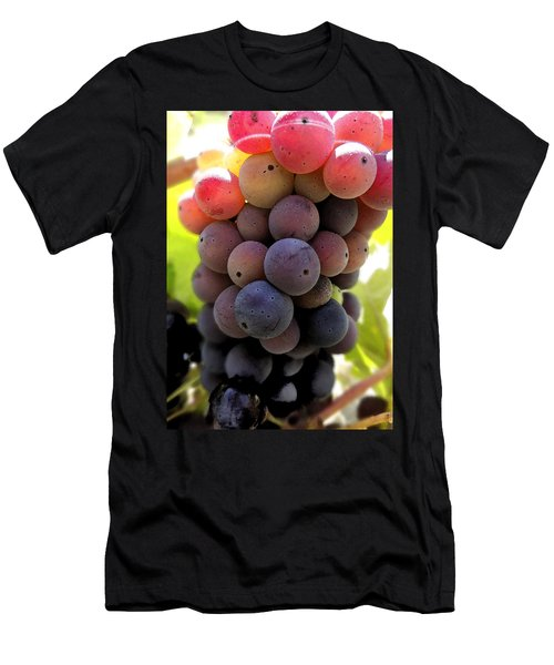 Bunch Of Ripening Grapes Men's T-Shirt (Slim Fit) by Anne Mott