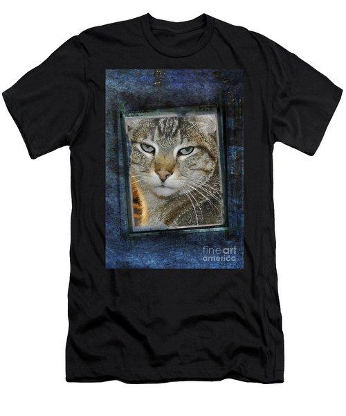 Cat Through A Tiny Window Men's T-Shirt (Athletic Fit)