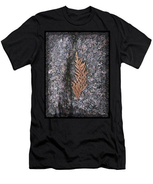 Cedar On Granite Men's T-Shirt (Athletic Fit)