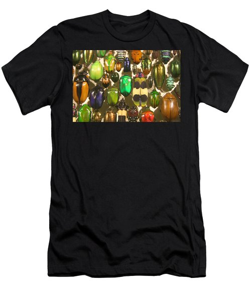 Colorful Insects Men's T-Shirt (Athletic Fit)