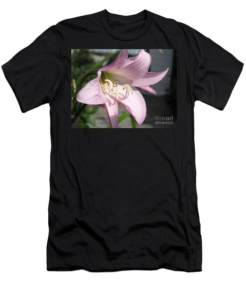 Crinum Lily Named Powellii Men's T-Shirt (Slim Fit) by J McCombie