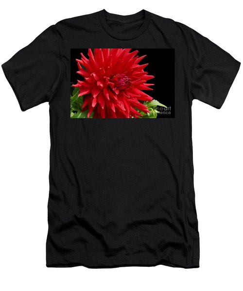 Decked Out Dahlia Men's T-Shirt (Athletic Fit)