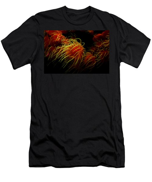 Deep Ocean Coral Polyp Men's T-Shirt (Athletic Fit)