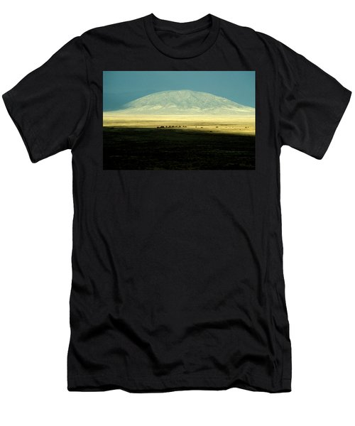 Dome Mountain Men's T-Shirt (Slim Fit) by Brent L Ander