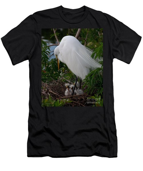 Egret With Chicks Men's T-Shirt (Athletic Fit)