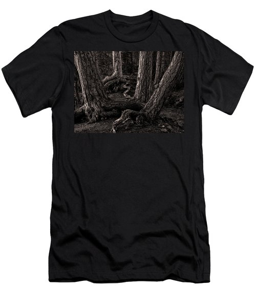Evening Pines Men's T-Shirt (Athletic Fit)