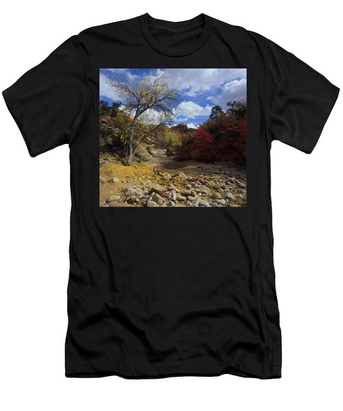 Fall In Zion High Country Men's T-Shirt (Athletic Fit)