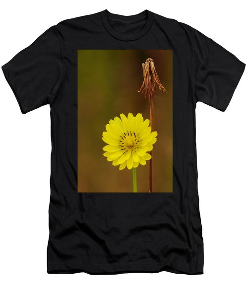False Dandelion Flower With Wilted Fruit Men's T-Shirt (Athletic Fit)