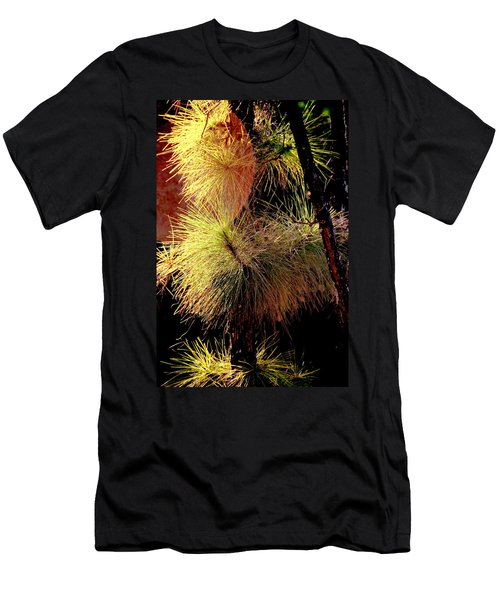 Florida Tree Men's T-Shirt (Athletic Fit)