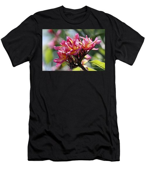 Frangipani Delight Men's T-Shirt (Athletic Fit)