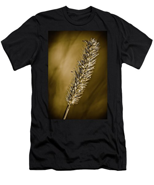 Grass Seedhead Men's T-Shirt (Athletic Fit)