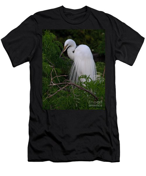 Great Egret Nesting Men's T-Shirt (Athletic Fit)