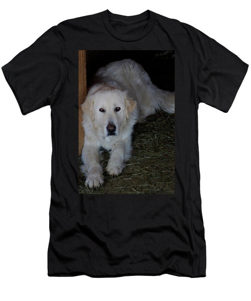 Guarding The Barn Men's T-Shirt (Athletic Fit)