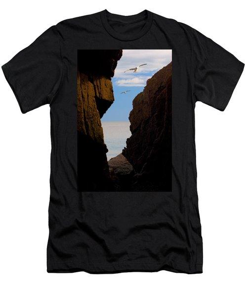 Gulls Of Acadia Men's T-Shirt (Athletic Fit)