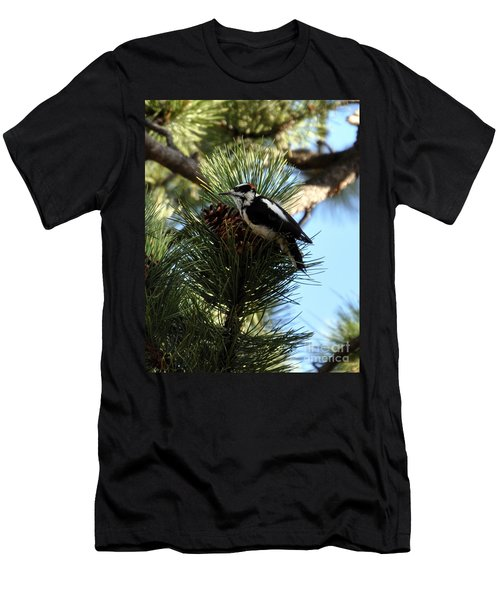 Hairy Woodpecker On Pine Cone Men's T-Shirt (Athletic Fit)