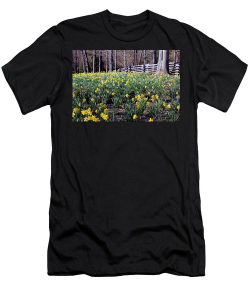 Hills Of Daffodils Men's T-Shirt (Slim Fit) by Betty Northcutt