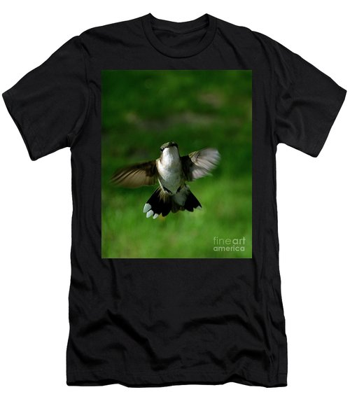 Hovering Hummingbird  Men's T-Shirt (Athletic Fit)