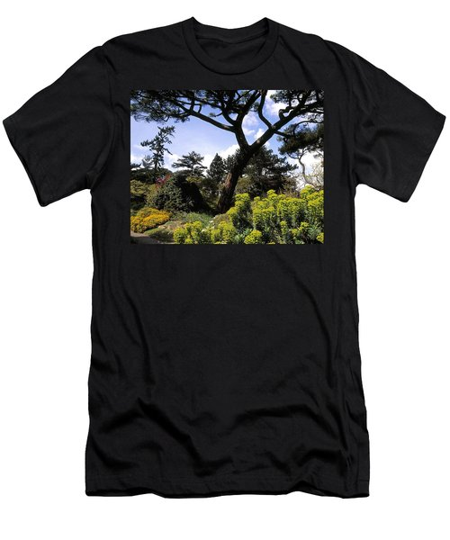 Irish National Botanic Gardens, Dublin Men's T-Shirt (Athletic Fit)