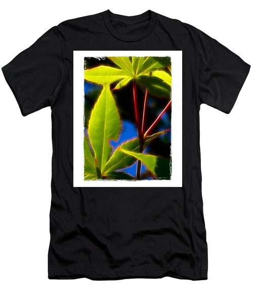 Japanese Maple Leaves Men's T-Shirt (Slim Fit) by Judi Bagwell