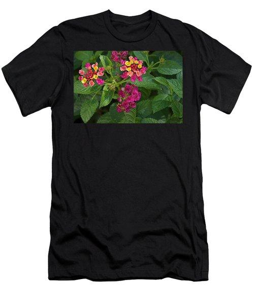 Men's T-Shirt (Slim Fit) featuring the photograph Lantana by Joseph Yarbrough