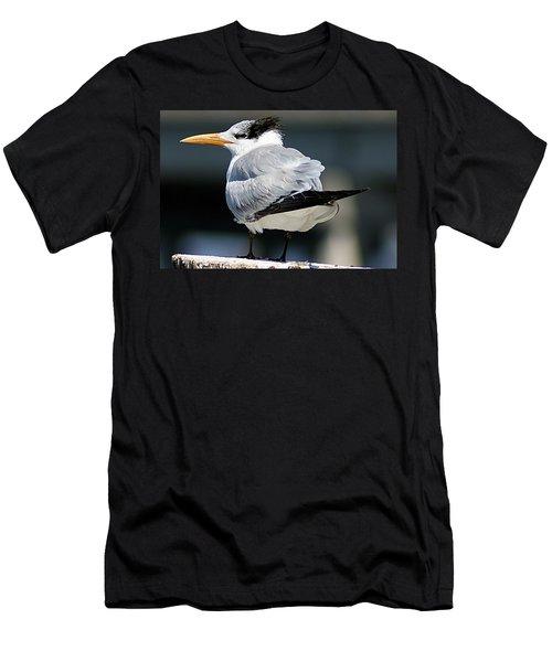 Larry Fine Reincarnated Men's T-Shirt (Athletic Fit)
